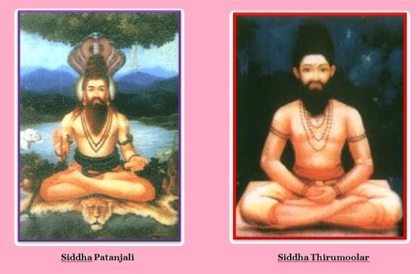 Siddha Patanjali & Thirumoolar