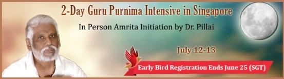 Babaji Guru Purnima 2014 (PC)