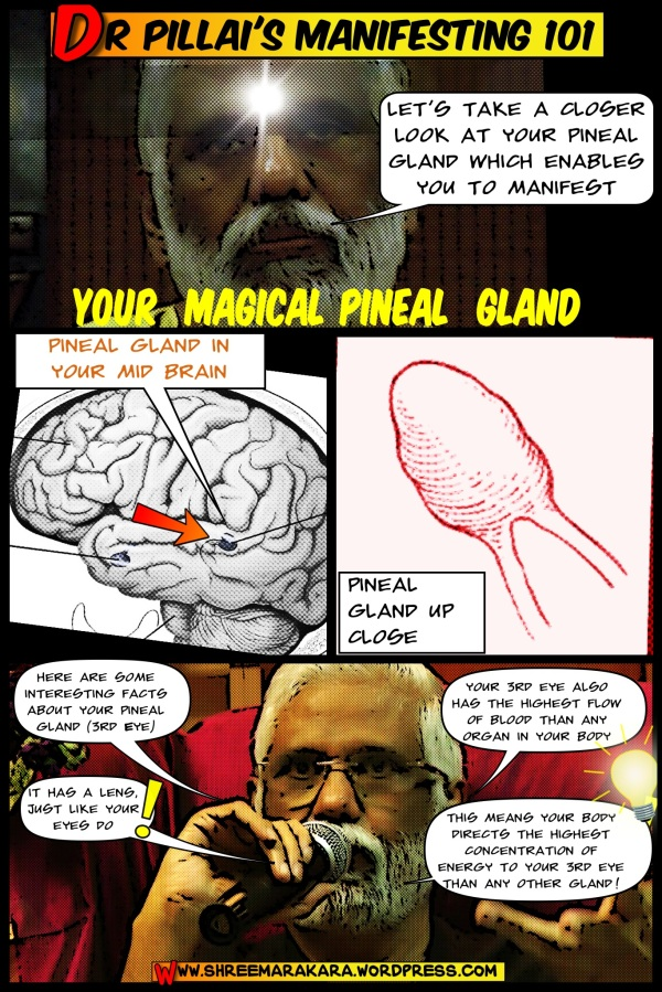 Dr Pillai Introduces You To Your Magic Pineal Gland (Revised)