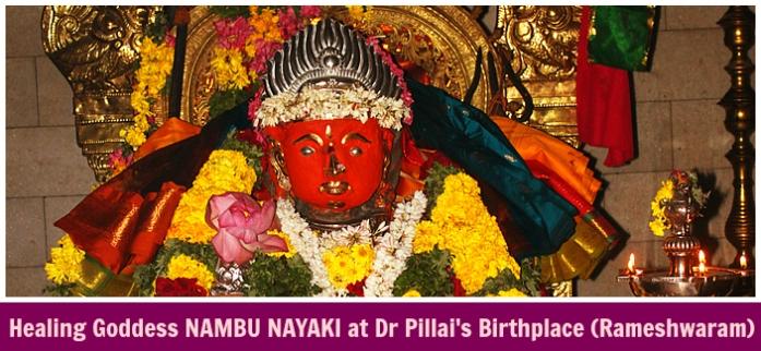 Goddess Nambu ShreemArakara