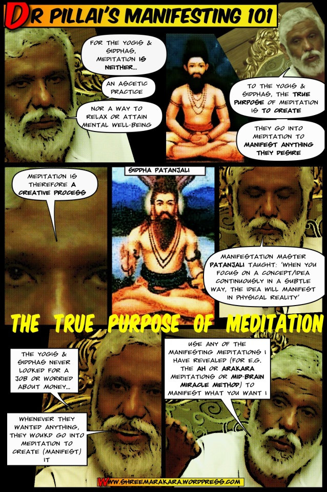 Dr Pillai (Babaji) on True Purpose of Meditation is to Manifest
