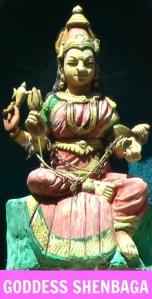 Goddess Shenbaga Devi (Shreemarakara)