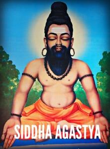 Siddha Agastya Shreemarakara