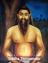 Shreemarakara Siddha Thirumoolar