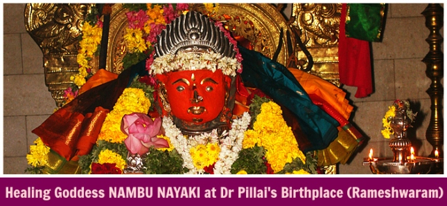 Shreemarakara Goddess Nambu